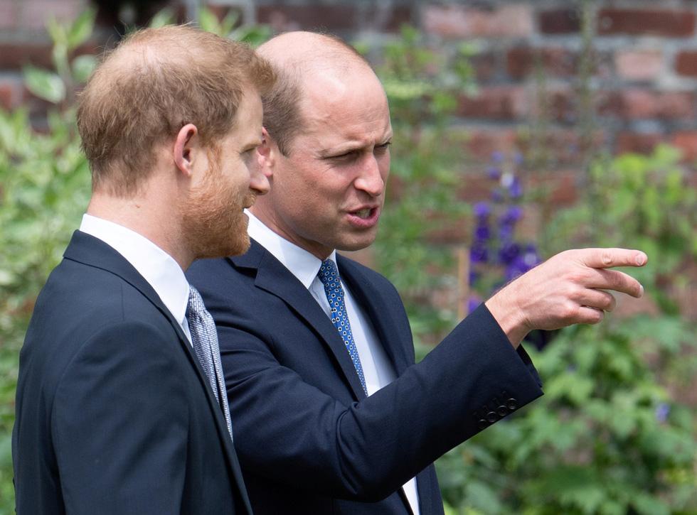 Hoàng tử Anh William và Harry cùng khánh thành tượng công nương Diana - Ảnh 4.