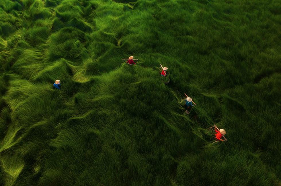 Ngắm bộ ảnh Việt Nam nhìn từ trên cao đạt bằng Danh dự cuộc thi ảnh thường niên FIAP - Ảnh 4.