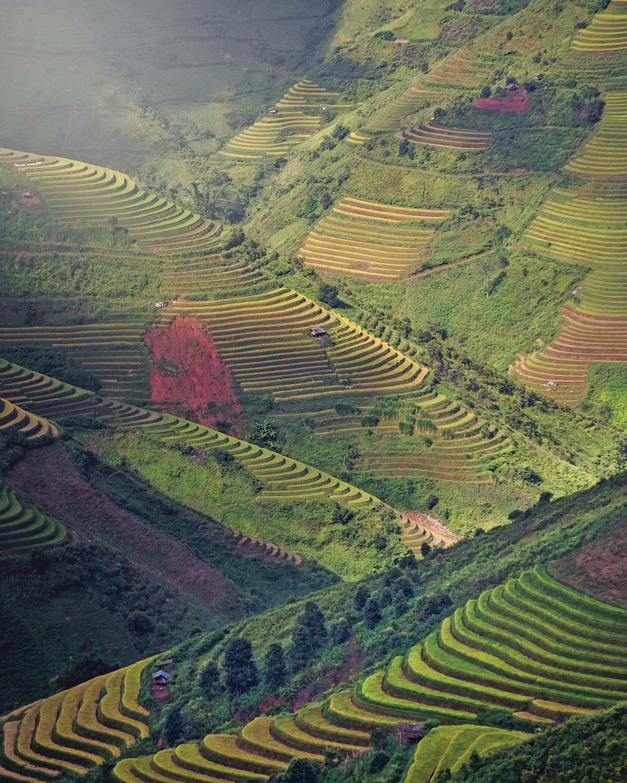Ấn tượng Việt Nam - Ảnh 7.