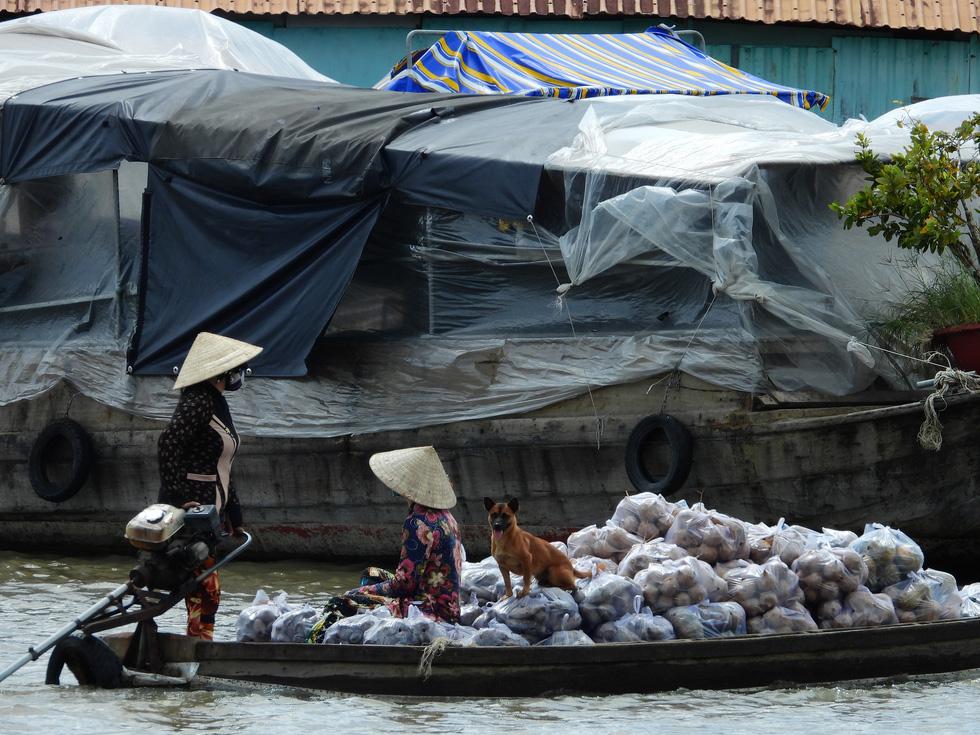 Ngắm chợ nổi lớn nhất miền Tây ngày giãn cách - Ảnh 14.