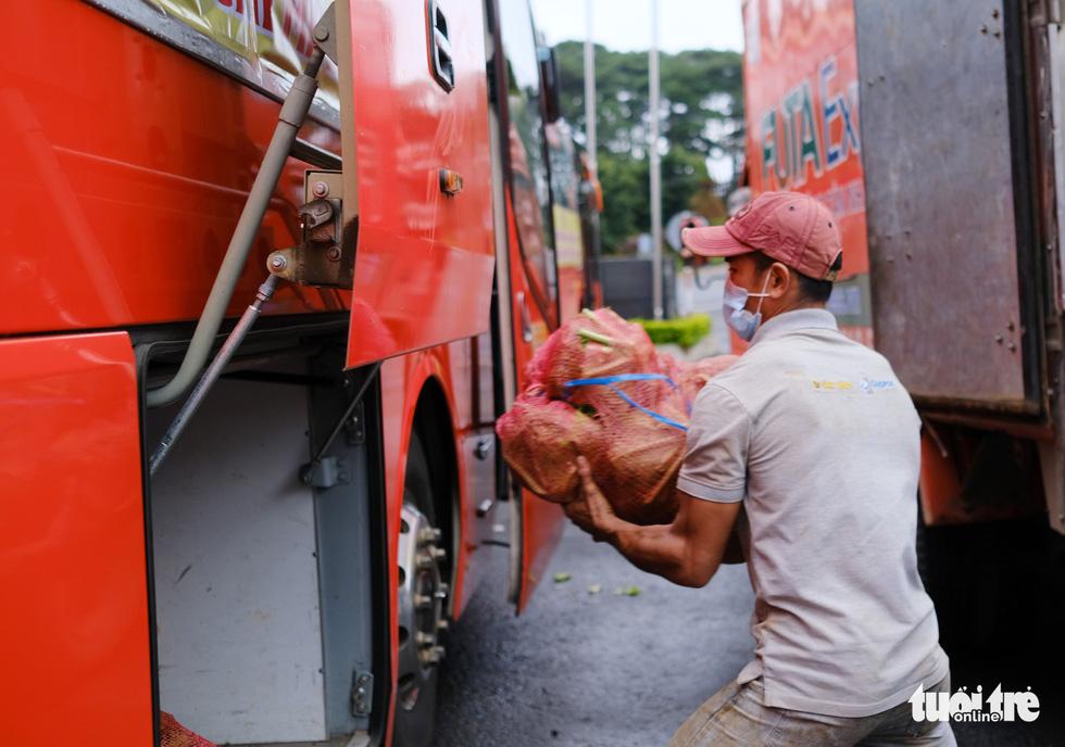 Lâm Đồng hào phóng, tặng rau nguyên vườn, chở rau bằng xe giường nằm máy lạnh đến TP.HCM - Ảnh 4.