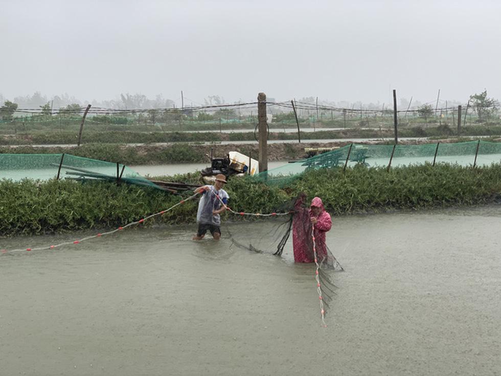 Chống bão số 5: Huế hạn chế dân ra đường, Nghệ An sơ tán dân đến nơi an toàn - Ảnh 2.
