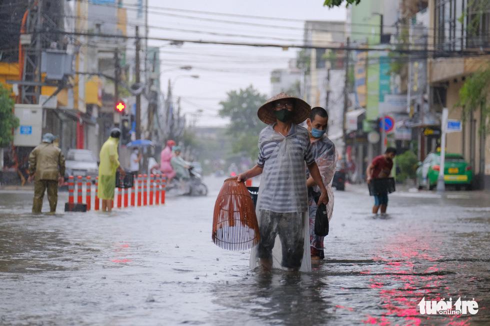 Mưa ngập nội thành, người dân Đà Nẵng ra đường bắt cá  - Ảnh 1.