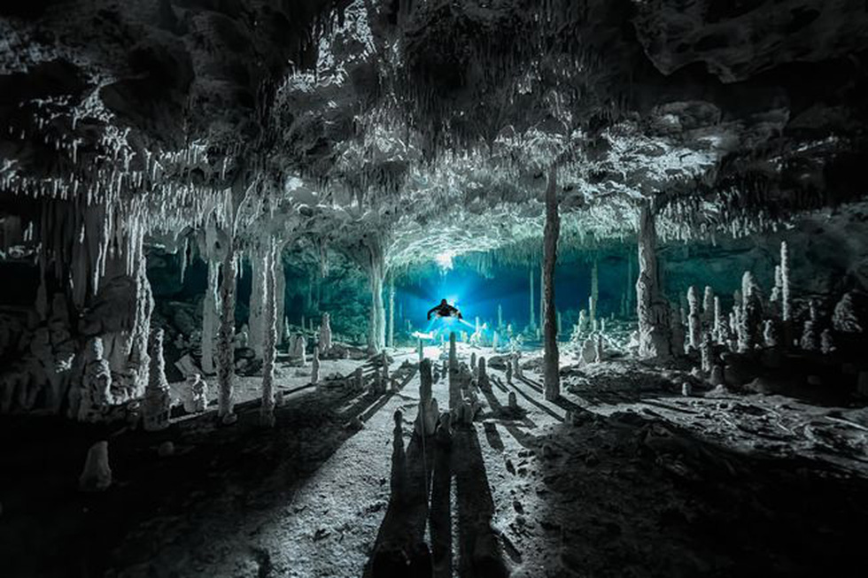 Ngắm biển xanh sâu thẳm và rực rỡ qua giải thưởng Nhiếp ảnh đại dương - Ảnh 7.