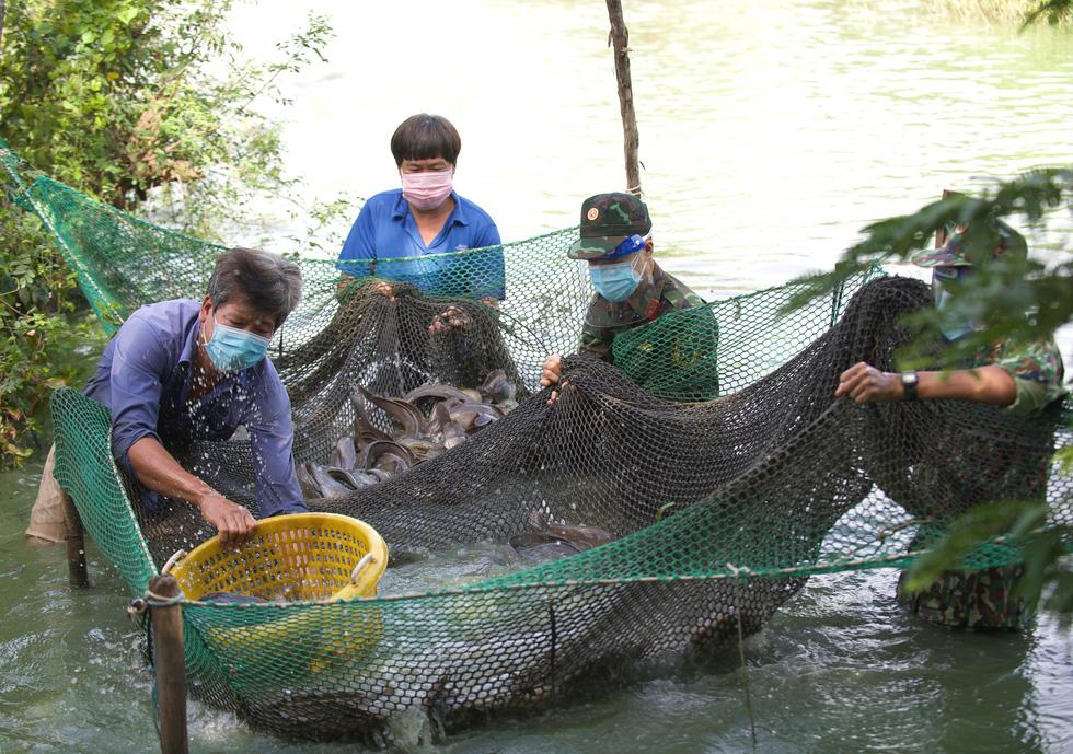 Bộ đội về thôn quê giúp nông dân vác lúa, bắt cá, giao sách giáo khoa cho học sinh - Ảnh 7.