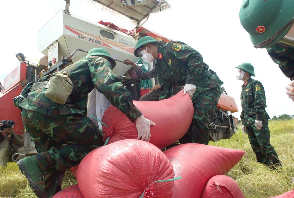 Bộ đội về thôn quê giúp nông dân vác lúa, bắt cá, giao sách giáo khoa cho học sinh - Ảnh 1.