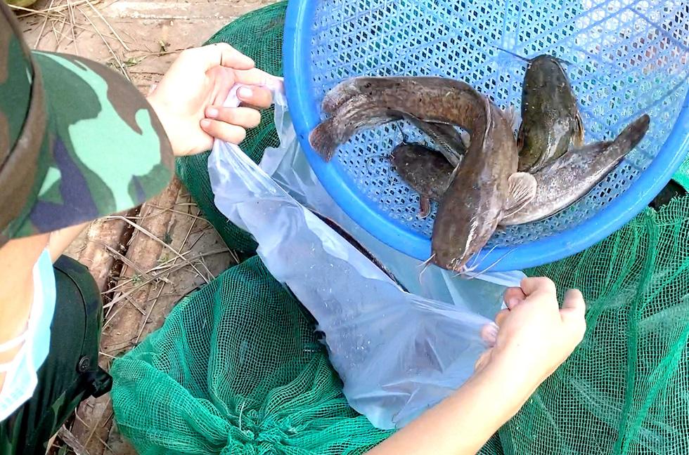 Bộ đội về thôn quê giúp nông dân vác lúa, bắt cá, giao sách giáo khoa cho học sinh - Ảnh 8.