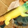 Con cá sấu đồ chơi và bài học dạy con của chị công nhân