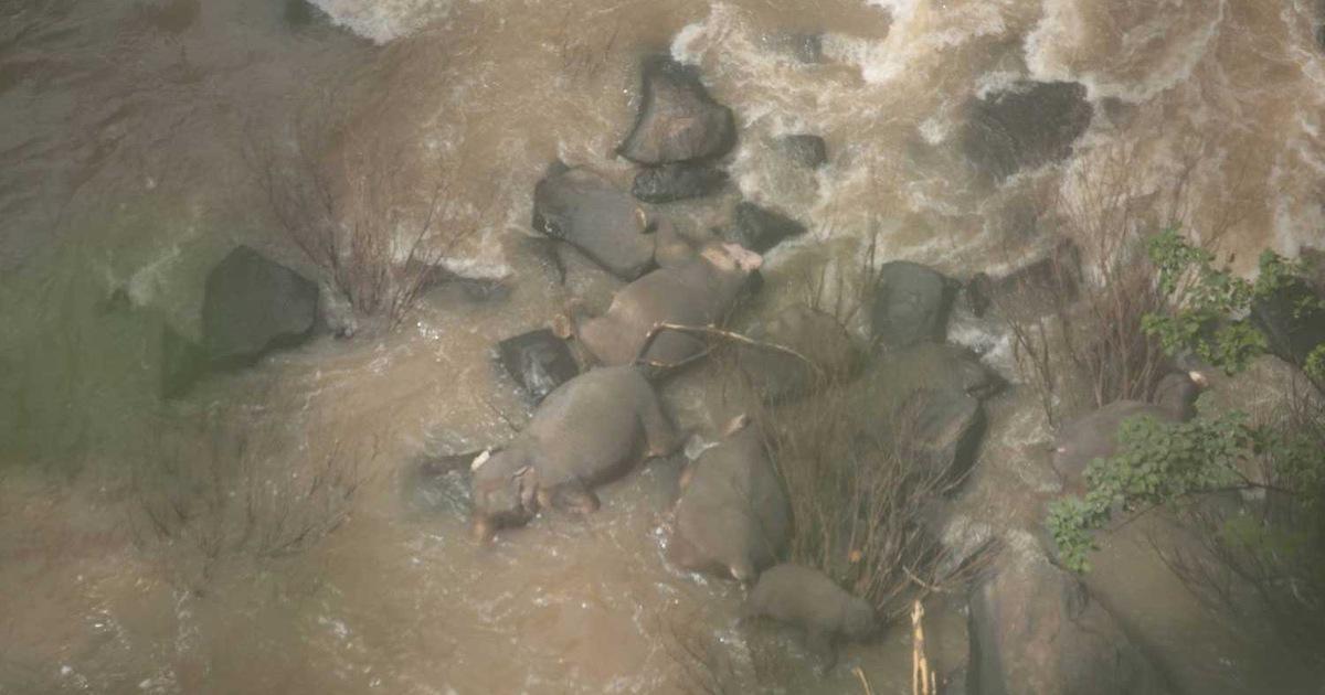 6 con voi mất mạng vì rơi xuống thác nước