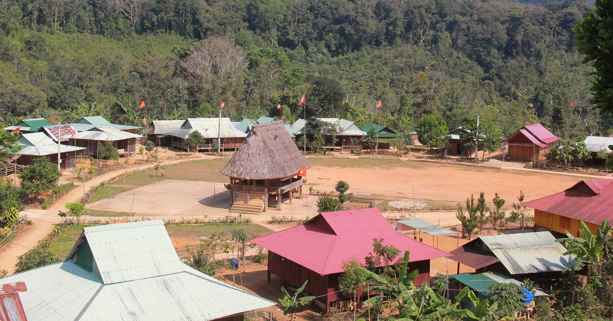 Tây Giang gìn giữ rừng xanh - Kỳ 2: ''Sống với rừng, chết dựa vào rừng''