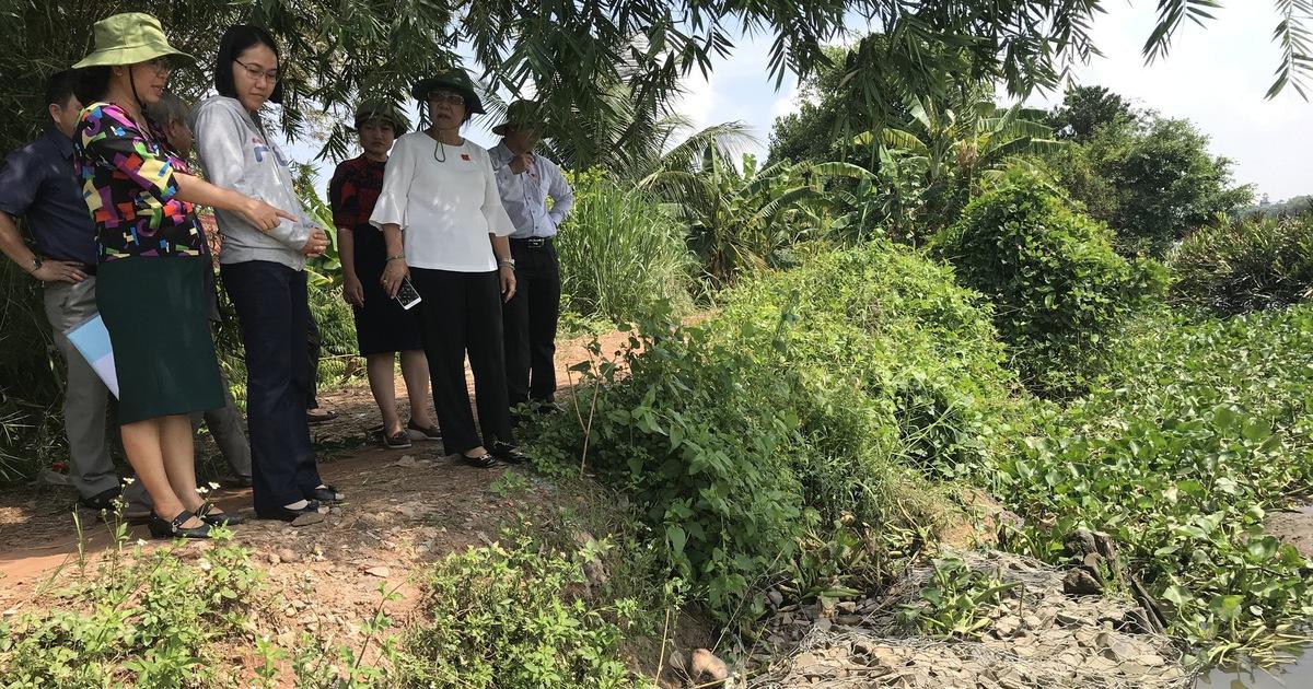 Đê bao sông Sài Gòn sạt lở vì không có đơn vị quản lý, duy tu