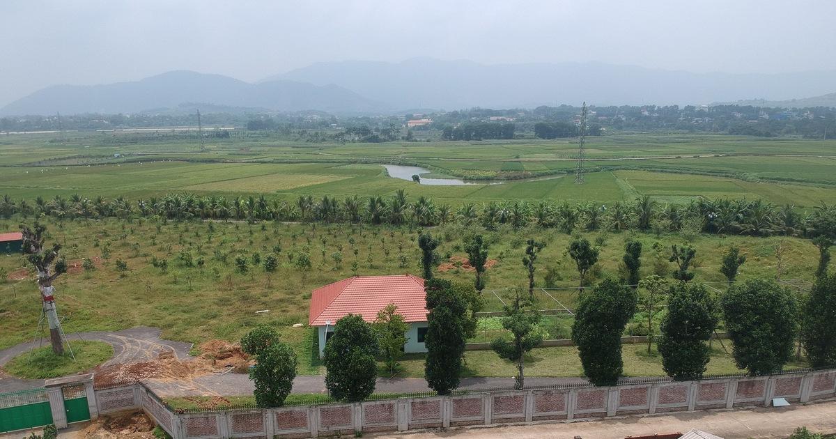 Vụ ''giao đất cho người nhà'': kiểm điểm giám đốc Sở Kế hoạch - Đầu tư Hà Nội