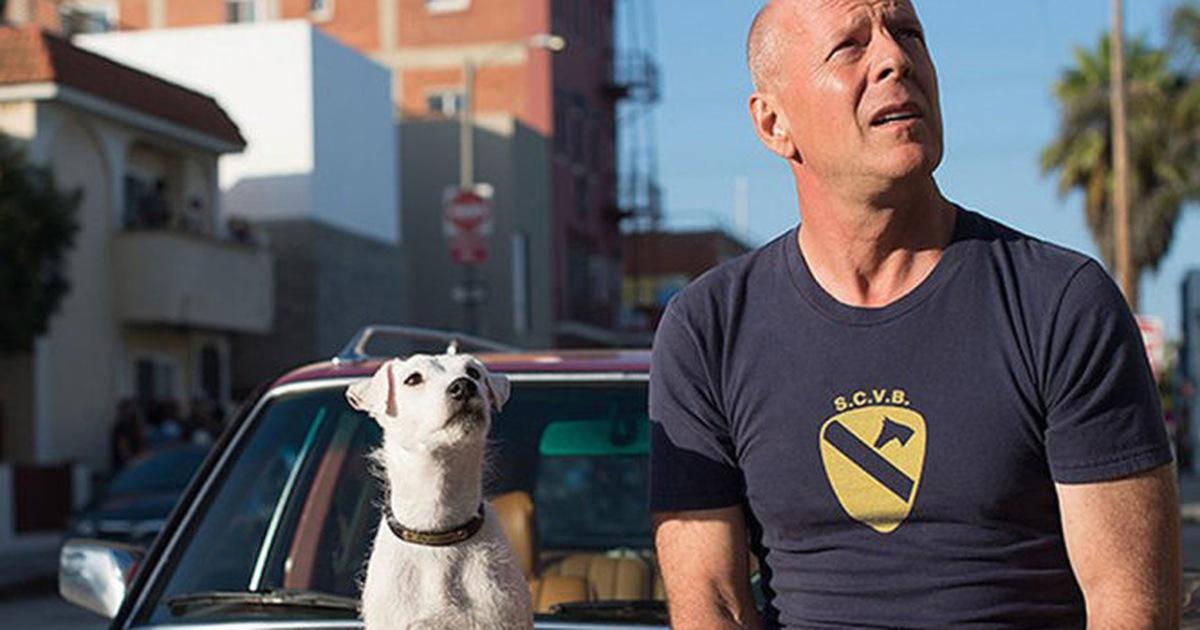 ''Già gân'' Bruce Willis trở lại màn bạc vì một chú chó cưng