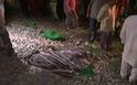 Ấn Độ: Đi dự lễ hội bị tàu hỏa tông, ít nhất 50 người chết