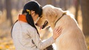 Điều gì xảy ra khi con người ở cạnh cún cưng?
