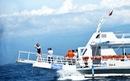 Đến Davao tắm biển, ngắm đại bàng