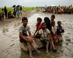Dòng người Rohingya chạy sang biên giới Bangladesh vẫn tiếp tục kéo dài nhiều km