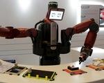 Robot sẽ 'cướp' việc làm của 800 triệu người vào năm 2030