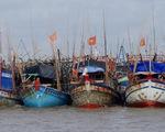 Tàu cá hết đường đánh bắt bất hợp pháp
