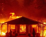 Tại sao cháy rừng ở Cali gây thiệt hại quá nặng nề?