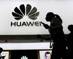 Thêm New Zealand tuyên bố 'cấm cửa' Huawei