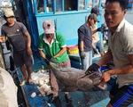 Chi phí đi biển tăng cao, 50% tàu đánh bắt xa bờ ở Khánh Hòa nằm bờ
