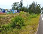 Kỷ luật phó giám đốc sở liên quan vụ phá rừng ở Phú Yên
