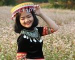 Cánh đồng hoa tam giác mạch ở Hà Nội hút giới trẻ đến check-in