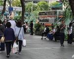 Từ 1-1-2019, phải hút thuốc đúng chỗ trên đường Orchard ở Singapore