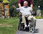 Xúc động hình ảnh chú chó Sully trung thành của ông Bush 'cha'