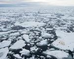 Videographic hiểm họa từ băng tan ở hai cực