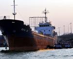 Tàu ngàn tấn va vào cầu Đồng Nai