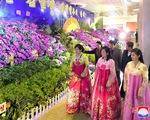 Hàn Quốc mở trang web về cuộc gặp thượng đỉnh liên Triều, gồm cả tiếng Việt