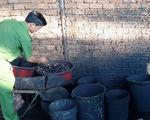 Còn nhiều cà phê bẩn trộn than pin tại 'thủ phủ' Đắk Nông - ảnh 6