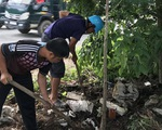 Trồng khắc phục cây xanh bị chết ở Sóc Trăng