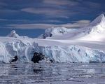 Băng Nam Cực tan khiến nước biển dâng 1cm