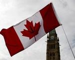 Thượng viện Canada phê chuẩn luật cho dùng cần sa tiêu khiển
