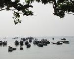 Đầu tư 42 tỉ xây dựng khu bảo tồn biển Lý Sơn