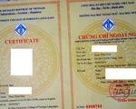 """Nhập nhằng cấp chứng chỉ ngoại ngữ B1 vì từ """"certificate"""""""