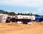 Nông dân trồng mía điêu đứng vì đường lậu hoành hành