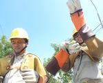 Gần 100% khách hàng đất liền của Điện lực Miền trung có điện lưới quốc gia
