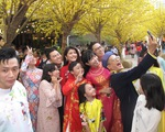 Tết Việt ở Nhà văn hóa Thanh niên TP.HCM nhiều màu sắc