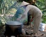 Làm dâu ngày Tết: Tôi chỉ phụ mẹ chồng nhặt rau, rửa ly