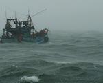Tàu 954 hải quân ứng cứu tàu cá Cà Mau hỏng máy trên đường tránh bão