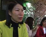8.394 giáo viên hợp đồng ở Hà Nội không đủ điều kiện xét tuyển đặc cách