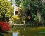 Sự thật sau những tác phẩm để đời - Kỳ 1: Ao thu xanh mướt giữa vườn Bùi