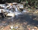 Có thành phần dầu thải trong nước sạch