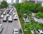 """Hà Nội """"xin"""" trồng thêm 600.000 cây xanh không qua đấu thầu"""