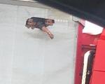 Người nhập cư khoét lỗ thùng xe tải chật bí đúng ngày 39 người chết trong container