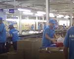 Video: Asanzo lắp ráp thủ công và có dấu hiệu
